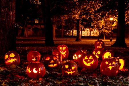 A variety of lit Jack-o-Lanterns on the ground at night